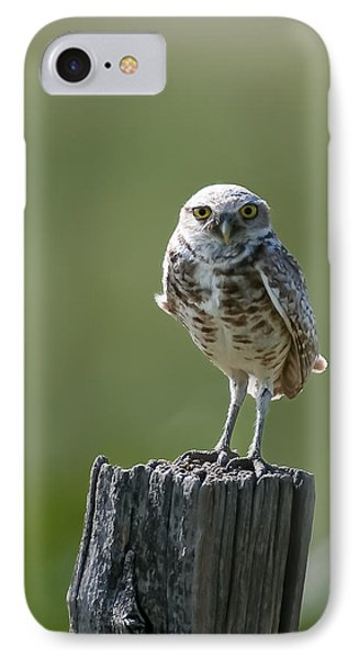 IPhone 7 Case featuring the photograph Burrowing Owl by Gary Lengyel