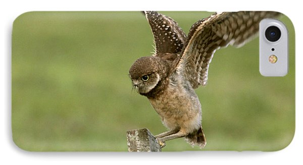 Burrowing Owl - Learning To Fly IPhone Case by Meg Rousher