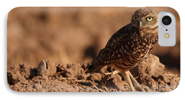 IPhone Case featuring the photograph Burrowing Owl Looking Back Over Shoulder by Max Allen