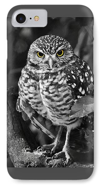 Burrowing Owl  Selective Color Eyes IPhone Case by Judy Wanamaker