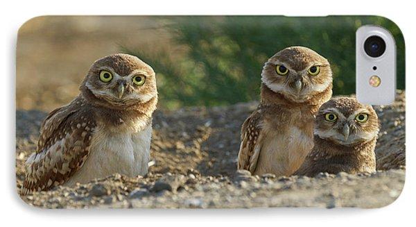 Burrowing Owls Phone Case by Doug Herr