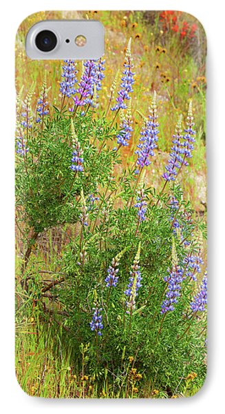 IPhone Case featuring the photograph Bush Lupine by Ram Vasudev