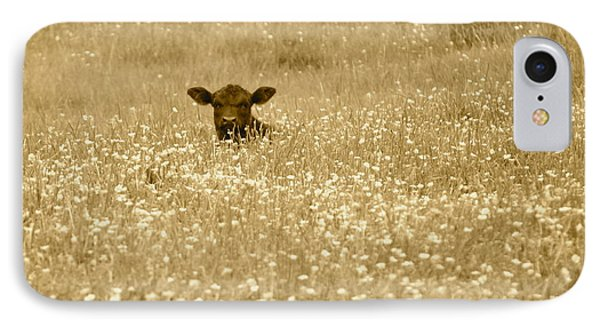 Buttercup In Sepia IPhone Case by JD Grimes