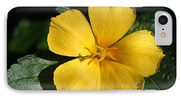 Buttercup Sunshine IPhone Case by Theresa Willingham