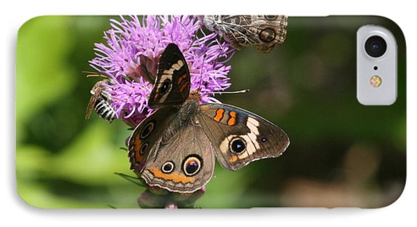 Butterflies And Purple Flower IPhone Case by Cathy Harper