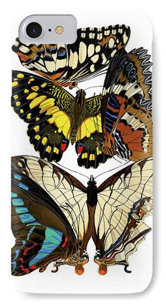 Butterflies, Lush Vintage Etomology Illustration IPhone Case by Tina Lavoie