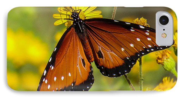 Butterfly 1 IPhone Case