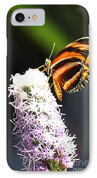 Butterfly 2 IPhone Case by Tom Prendergast