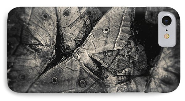 Butterfly #2056 IPhone Case