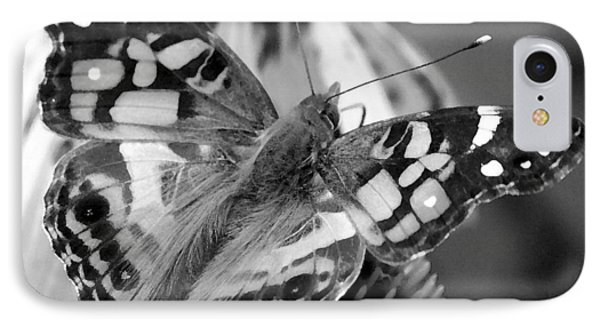 Butterfly American Lady IPhone Case