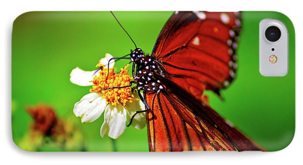 Butterfly Beauty IPhone Case by Mark Andrew Thomas