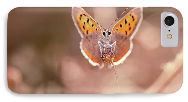 Butterfly Beauty IPhone 7 Case