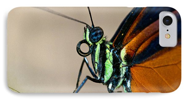Butterfly Closeup Phone Case by Christopher Holmes