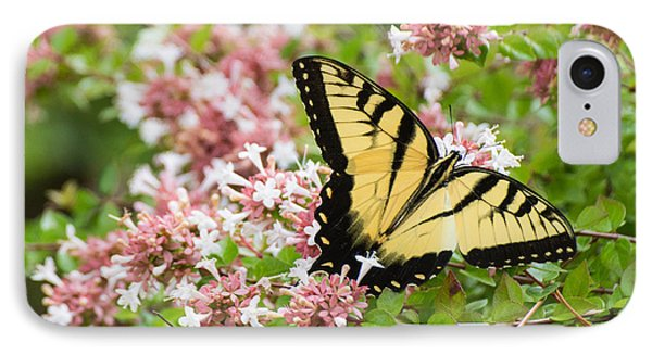 IPhone Case featuring the photograph Butterfly Haven by Julie Andel