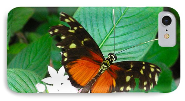 Butterfly House  IPhone Case