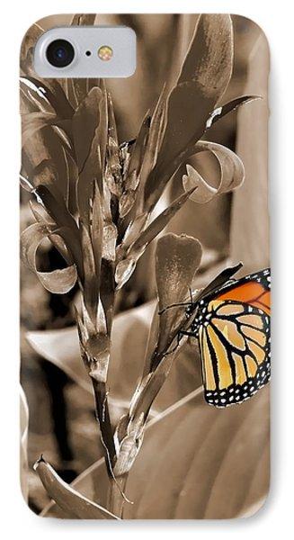 Butterfly In Sepia IPhone Case by Lauren Radke