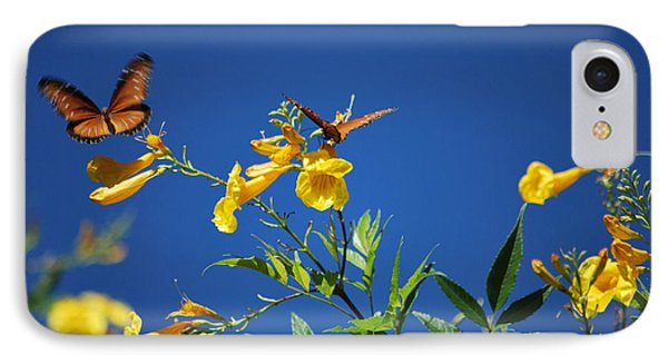 IPhone Case featuring the photograph Butterfly In The Sonoran Desert Musuem by Donna Greene