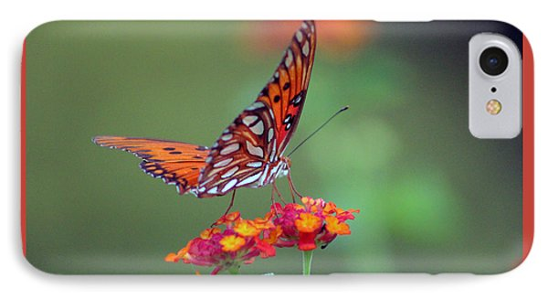 Butterfly Majestic IPhone Case