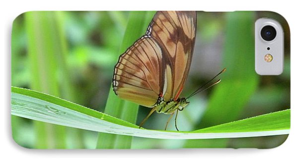 IPhone Case featuring the photograph Butterfly by Manuela Constantin