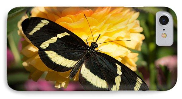 Butterfly Moment IPhone Case by Ana V Ramirez