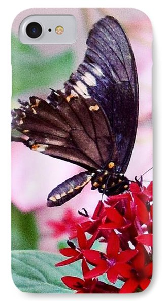 Black Butterfly On Red Flower IPhone 7 Case by Sandy Taylor