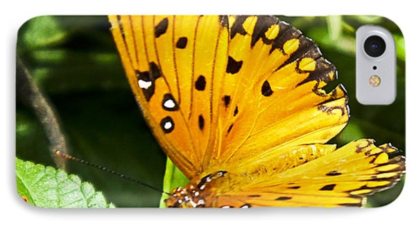 IPhone Case featuring the photograph Butterfly On Lantana by Bill Barber