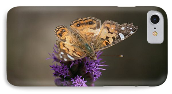 IPhone Case featuring the photograph Butterfly In Solo by Cathy Harper