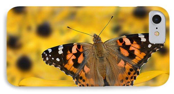 Butterfly On Rudbeckia IPhone Case by Joe Bonita