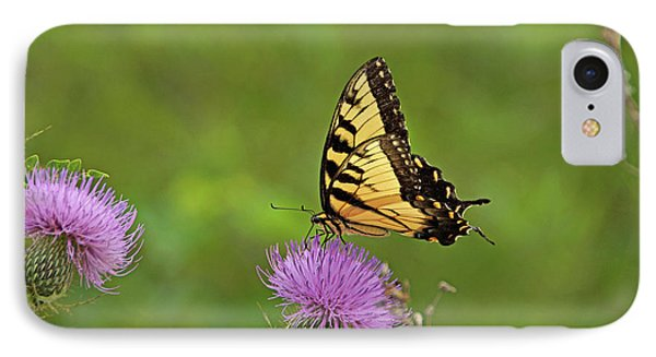 IPhone Case featuring the photograph Butterfly On Thistle by Sandy Keeton