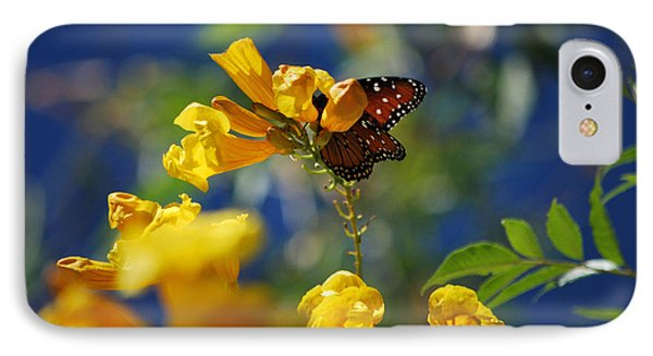 IPhone Case featuring the photograph Butterfly Pollinating Flowers  by Donna Greene