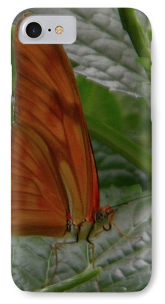 IPhone Case featuring the photograph Butterfly Smile by Manuela Constantin