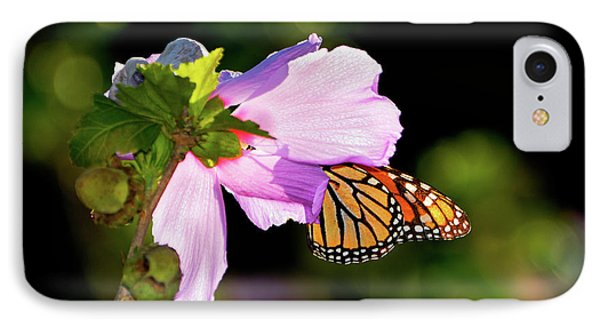 Butterfly Sunset Phone Case by Betty LaRue