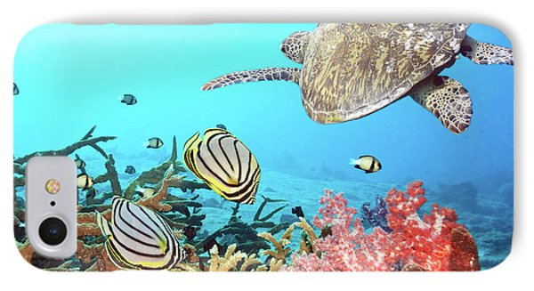 Butterflyfishes And Turtle IPhone 7 Case by MotHaiBaPhoto Prints