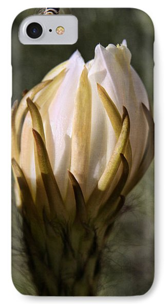 IPhone Case featuring the photograph Buzzz by Tammy Espino