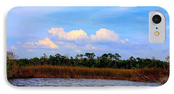 Cabbage Palms And Salt Marsh Grasses Of The Waccasassa Preserve IPhone Case by Barbara Bowen