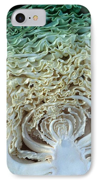 Cabbage Universe Phone Case by Laurie Paci