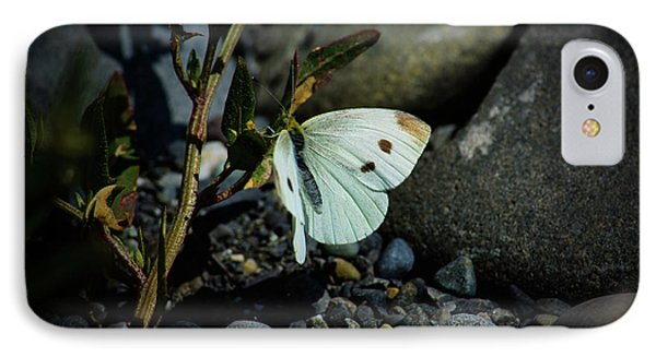 IPhone Case featuring the photograph Cabbage White Butterfly by Tikvah's Hope