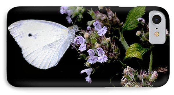 Cabbage White On Catnip IPhone Case by Randy Bodkins