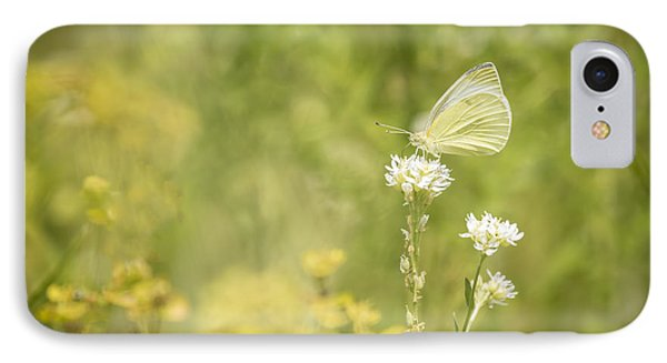 Cabbage White IPhone Case by Thomas Young