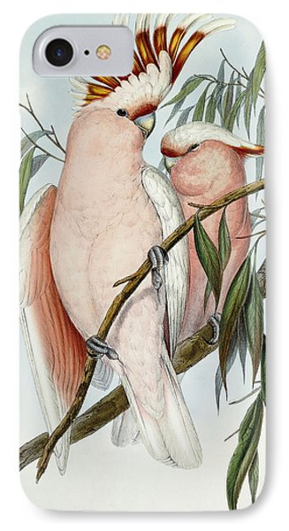 Cacatua Leadbeateri IPhone Case by John Gould