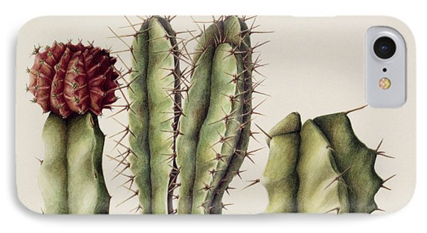 Cacti IPhone Case by Annabel Barrett