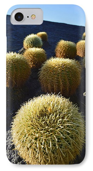 IPhone Case featuring the photograph Cacti On The Roof by Marek Stepan