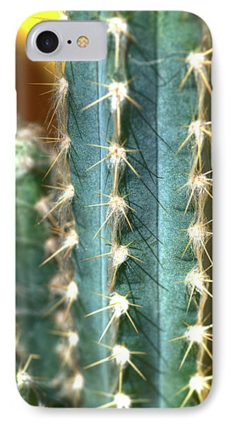 IPhone Case featuring the photograph Cactus 3 by Jim and Emily Bush