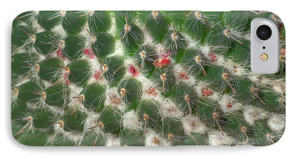 IPhone Case featuring the photograph Cactus 5 by Jim and Emily Bush