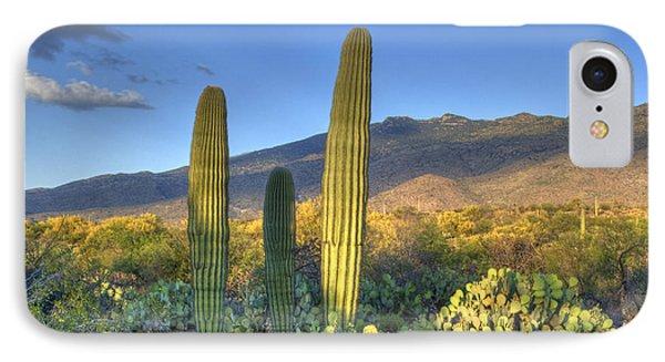 Cactus Desert Landscape IPhone Case by Juli Scalzi