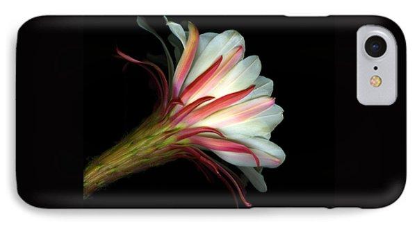 Cactus Flower Phone Case by Christian Slanec