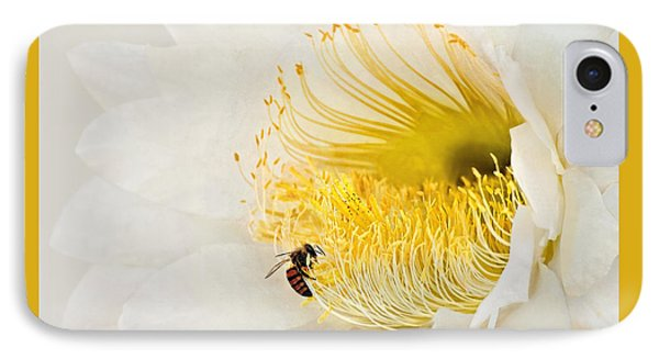 IPhone Case featuring the photograph Cactus Flower Diner No. 2 by Joe Bonita