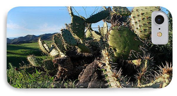 IPhone Case featuring the photograph Cactus In The Mountains by Matt Harang
