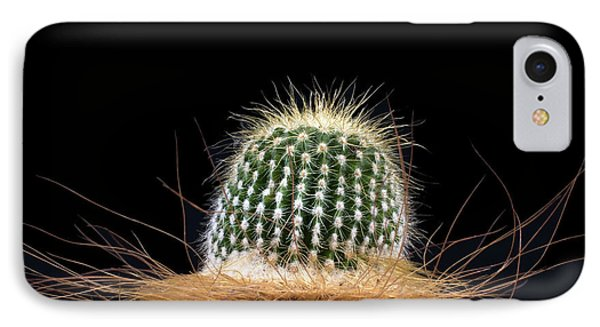 IPhone Case featuring the photograph Cactus Photo by Catherine Lau