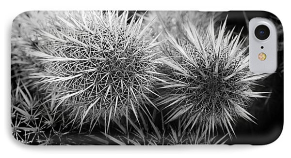 IPhone Case featuring the photograph Cactus Spines by Phyllis Denton
